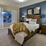 Basement Bedroom-1 Roller Coaster
